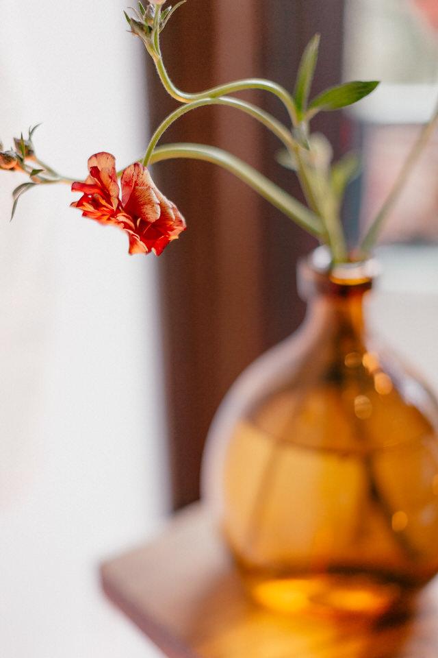 coyote flowers simple vase